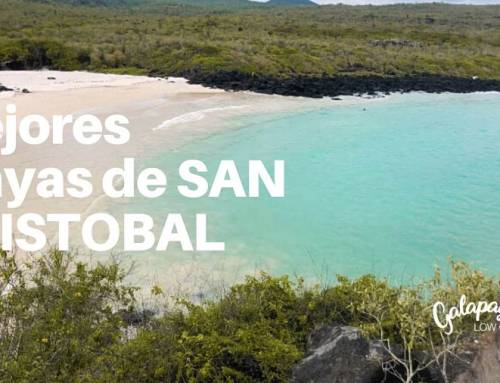 Top playas isla San Cristobal