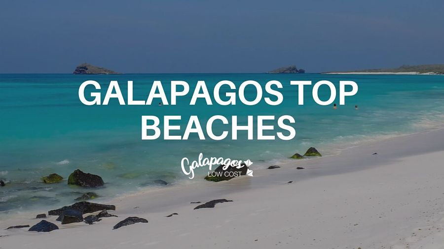galapagos top beaches, galapagos best beaches